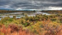 South Fork Snake River